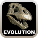 Cover für Evolution